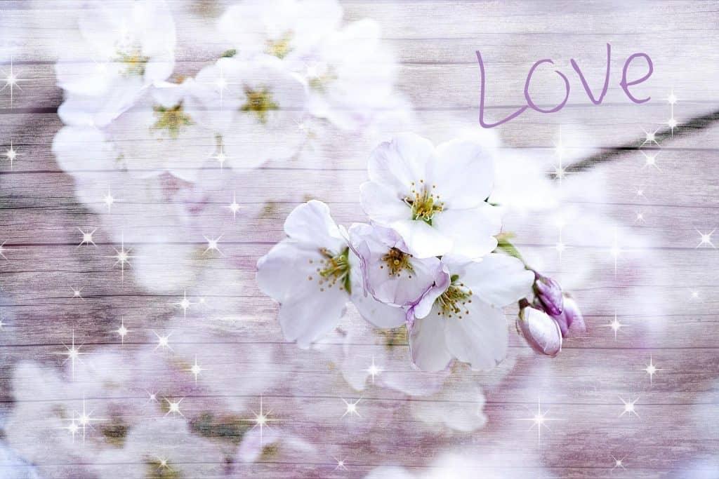 שומרים על האהבה