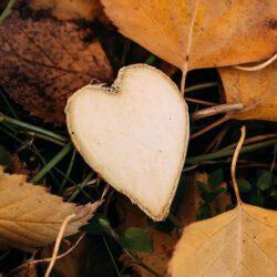 מציאת אהבה אמת