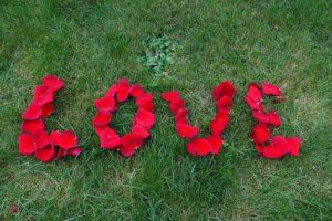 אהבה במבחן