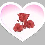 2 מוטיבים לאהבה וירטואלית