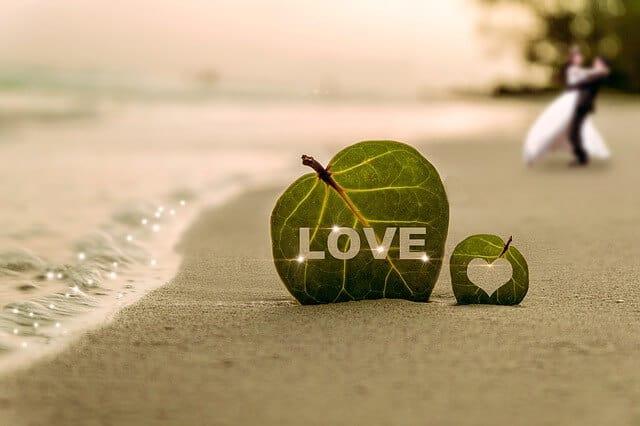 אהבה בגיל נעורים