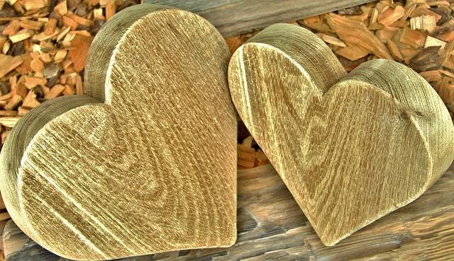 ההבדל בין תשוקה לאהבה