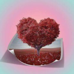 מכתב מיוחד לאהבה