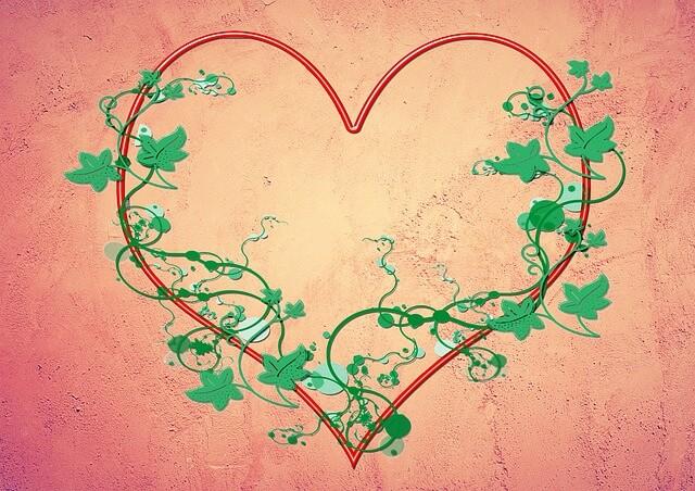 סיבות לאהבה שלי אלייך