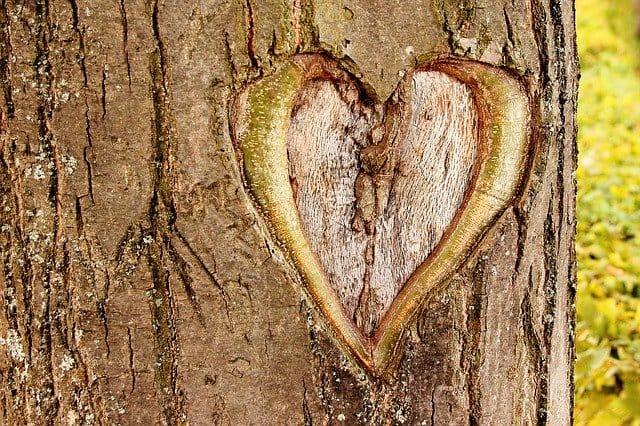 סימנים לאהבה אמתית