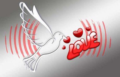 אהבה בראי הקבלה