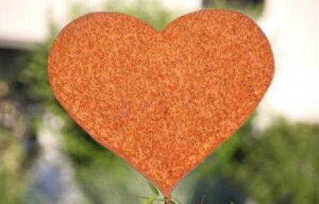 3 דרכים להכיר בן זוג