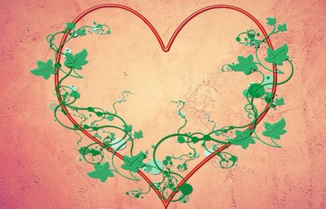 51 סיבות לאהבה שלי אלייך