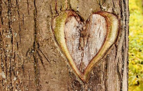 5 סימנים לאהבה אמיתית