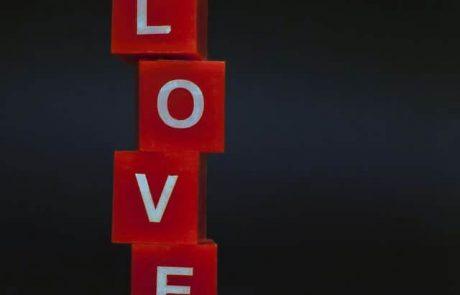 24 משפטי אהבה נכזבת