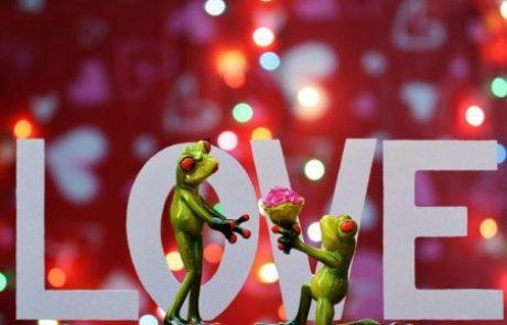 6 התשובות לזוגיות טובה
