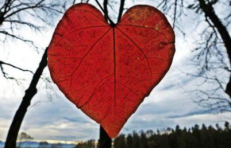 8 טיפים שיעזרו לכם לשמור על זוגיות טובה