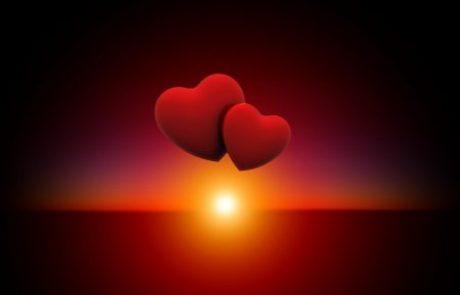 12 פירושים למילה אהבה